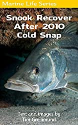 Snook Recover After 2010 Cold Snap