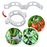 BenefitUSA Plant Support Garden Clips 25mm Tomato Trellis Clips Support Vine Vegetables Tomato to Grow Upright (1000)