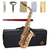 Kaizer Reliable Student Alto Saxophone 1000 Series Standard E Flat Eb in Gold Lacquer with Included Action Camera and Accessories