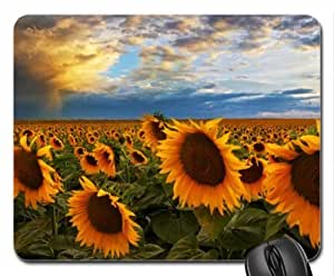 A Field of Sunflowers in Colorado Mouse Pad, Mousepad (Flowers Mouse Pad)