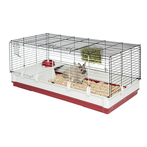 Buy what is the best cage for a guinea pig