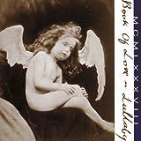 51yRp J4TmL. SL160  - Interview - Susan Ottaviano From Book of Love