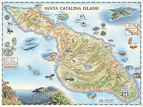 Hand Drawn Map - Xplorer Maps Santa Catalina Island Map Wall Art Poster - Authentic Hand Drawn Maps in Antique Style - Lithographic Print