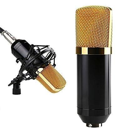 Amazon.com: Yuker mic-001 condensador de sonido grabación de ...