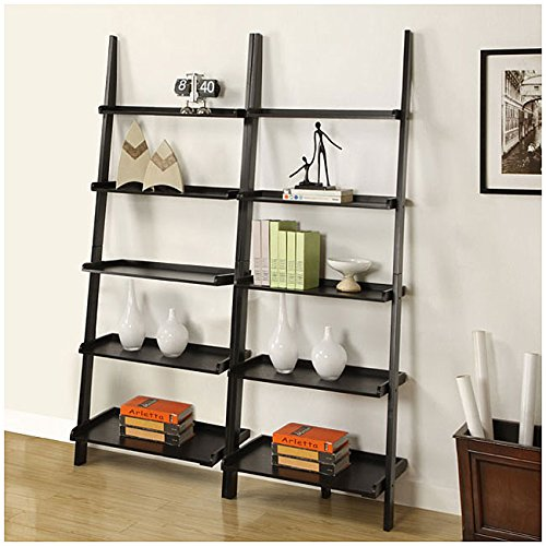 Black Five-tier 2-piece Leaning Ladder Shelf Set by Black Five