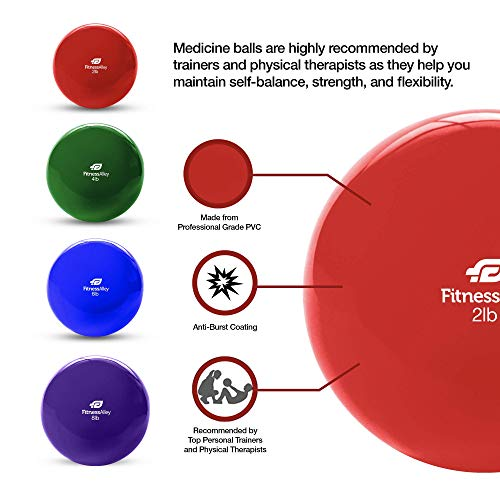 Fitness Alley The Weighted Pilates Balls/Fitness Toning Balls/Medicine Ball PVC Coated - 4 Balls Set (2, 4, 6, 8 lbs) - 1 per Weight/not Pair