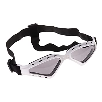e8b65d0bd0d Buy MagiDeal Stylish and Fun Protection Sun Glasses for Dog Portable Eye  Wear Protection - White