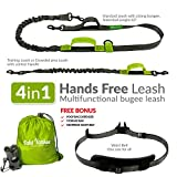 Hands Free Dog Leash + Training Running Walking Leash & Double Leash Set, Fits 2 Dogs + Reflective Leash • Adjustable Waist Belt + Strong Bungee Leash + Poop Bag Holder • by Take Yankee