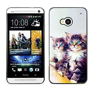 Vortex Accessory Carcasa Protectora Para HTC ONE ( M7 ) - Maine Coon Kittens Blue Eyes Feline Cat -