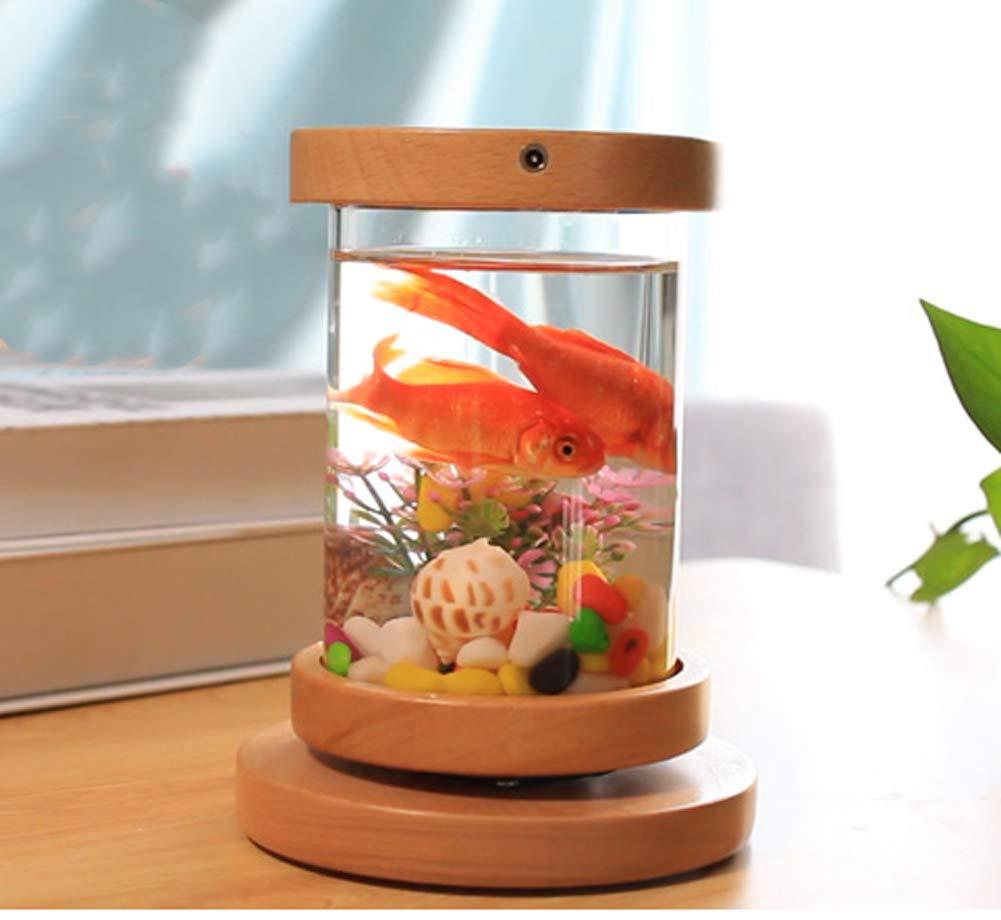 11.515.5cm JIANGU LED redating aquarium home living room decoration birthday gift