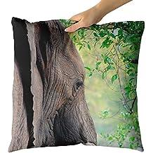 Westlake Art Decorative Throw Pillow - Elephant Elephants - Photography Home Decor Living Room - 18x18in (x8r-61f-05b)