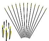 "Huntingdoor 12Pack Black Shaft 31"" Archery Fiberglass Target Practice Arrows for Recurve Bow"