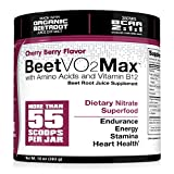 juice booster - BeetVO2Max - Organic Beet Root Juice Powder + BCAA Amino Acids, Vitamin B12 & L-Arginine | Nitric Oxide Booster Supplement | Non-GMO Hyper Endurance Formula