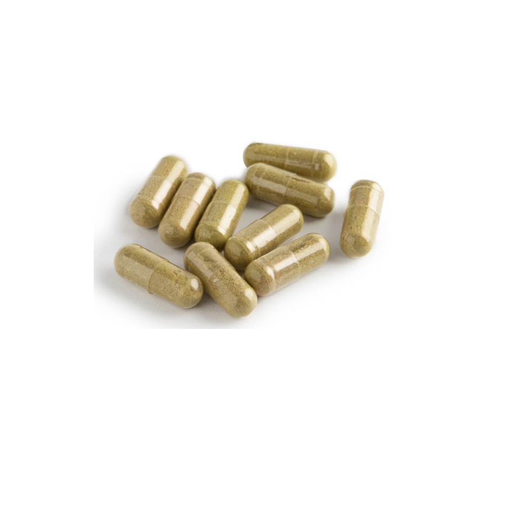 Digest Enzymes 480mg | Premium Enzyme Complex | Digestión ...