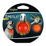 Spotlit LED Carabiner Light - Orange