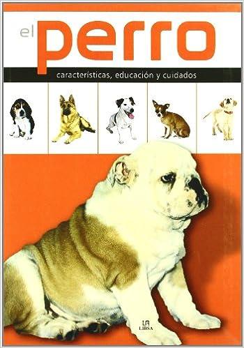 El Perro: Características, Educación y Cuidados Enciclopedia de las Mascotas: Amazon.es: Javier Villahizan: Libros