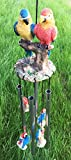 Red and Blue Scarlet Macaw Parrots Couple Resonant Relaxing Wind Chime Patio Review