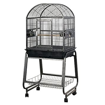 Amazon.com: A & E cages-solid parte superior Dome Jaula para ...