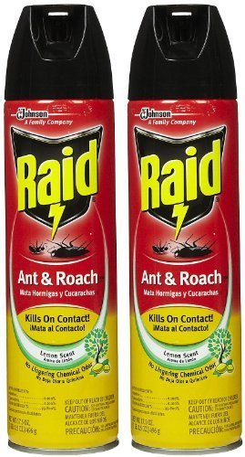 (Raid Ant & Roach Killer Lemon Scent, 17.5 OZ (Pack - 3))