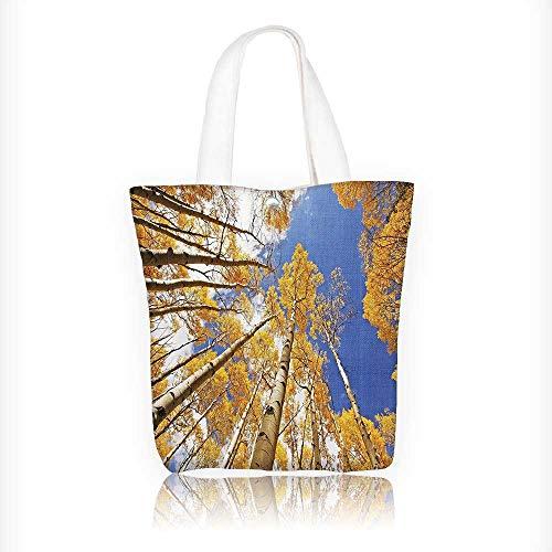 Women's Canvas Tote Handbags Tall Aspen Trees to Clouds in ll Regial Sun Burst Wilderness Casual Top Handle Bag Crossbody Shoulder Bag Purse W11xH11xD3 INCH