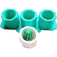 Cutowin - cactus Molde de silicona, molde