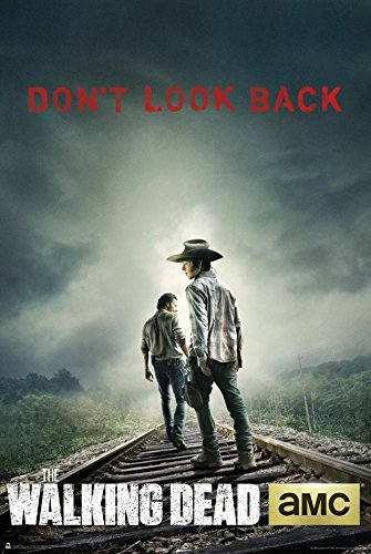 Walking Dead Poster Railroad Tracks