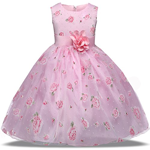 TTYAOVO Girl Chiffon Tulle Flower Princess Wedding Party Dress Size 1-2 Years Pink1