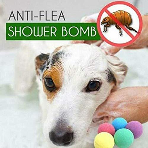 Best Dog Grooming Wipes