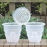 Meshpot Clear Plastic Orchid Pots With Holes - 3 Pack (2Pcs 7 Inch Pot,1Pc 6 Inch Pot)