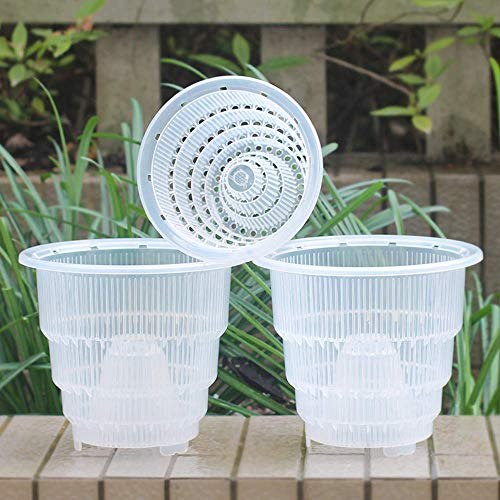 Meshpot Clear Plastic Orchid Pots With Holes – 3 Pack (2Pcs 7 Inch Pot,1Pc 6 Inch Pot)