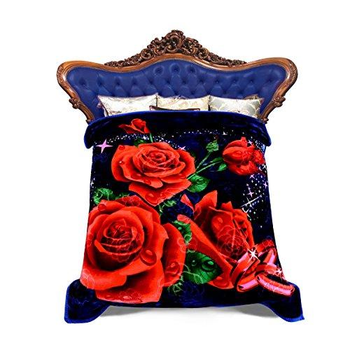 Raschel Plush Queen Blanket (JML Heavy Warm Blanket, Plush Blankets Queen Size 79