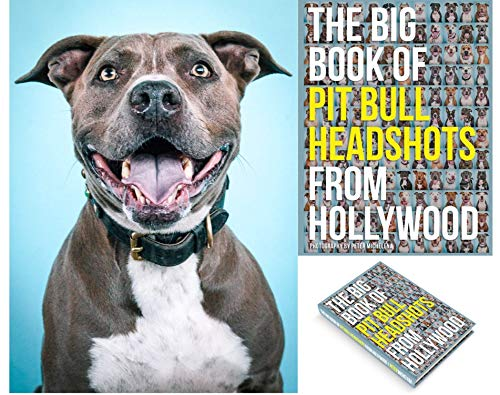 """Calling all Pit Bull Lovers! Hollywood Photographer and Pit Bull advocate, Peter Michelena spent over a year capturing the 200 irresistible """"Pitty"""" smiles in this limited edition, 9x12 hardcover. When most people hear Pit Bull they automatically pict..."""