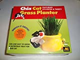 Chia Cat Grass Sylvester and Tweety