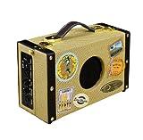 Luna Ukulele Suitcase Amp with 9V Battery and AC Adapter