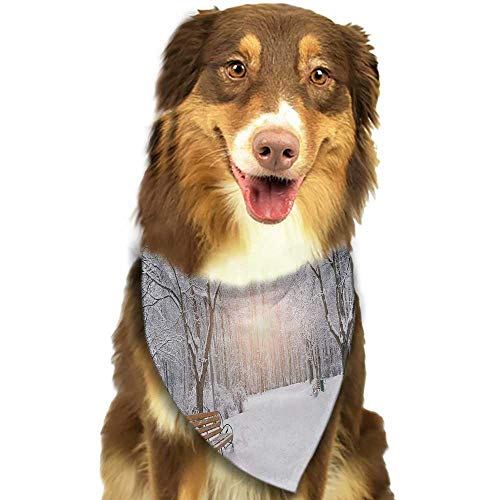 Custom pet Scarf Winter Snowy Leafless Trees and Benches in The City Park Sunset Woodland Outdoors W27.5 xL12 Scarf for Small and Medium Dogs and Cats]()