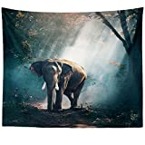 Westlake Art - Wall Hanging Tapestry - Everyday Nature - Photography Home Decor Living Room - 26x36in