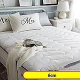 HXYL Thicken Tatami Mat Mattress Pad,Memory Foam Tweezers Student Dormitory Futon Tatami Bed Mattress Cushion-E 90x200cm(35x79inch)