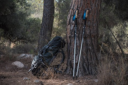 Collapsible Hiking & Trekking Poles, 2 Extremely Lightweight Foldable Walking Sticks, With Unique BELT MOUNTED HOLDERS gift, Guaranteed By High Stream Gear (115 135cm)