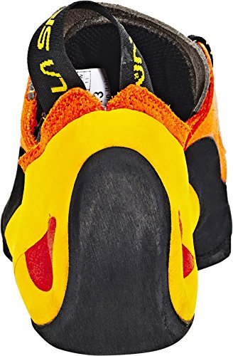 Orange Sportiva Mens Solution La Marron Hn8IXXa