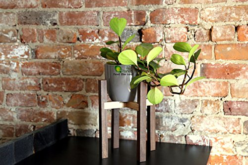The Unique Wood Plant Pot Stand