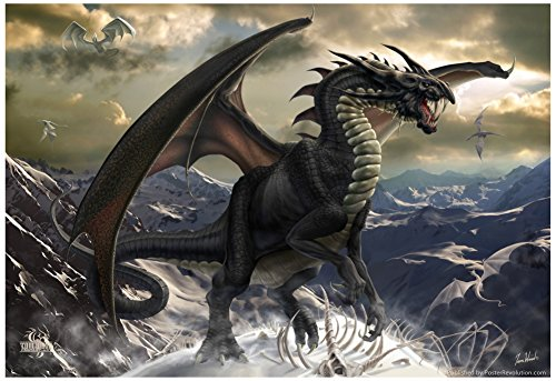 Rogue Dragon Poster by Tom Wood 19 x 13in (Tom Wood Dragon compare prices)