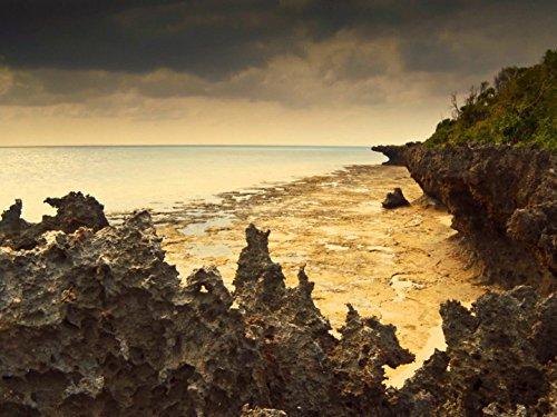 Zanzibar: Land of Giants