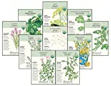 Botanical Interests Organic''Herb Garden'' Seed Collection I - 10 Packets with Gift Box