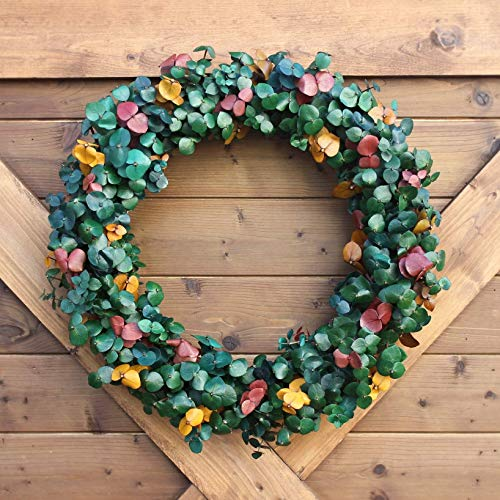 Handmade Natural Preserved Eucalyptus Foliage Wreath   Tri-Color Home Accent   Preserved Washed Dried Eucalyptus Stems   Handmade in the USA