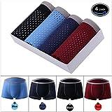 Brand Men's Underwear Breathable Ice Silk Mesh Men Pack Silk-Slip Supple Boxer Briefs (X-Large/36-38, WE:Multicolored)