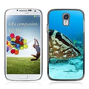 Super Stellar Slim PC Hard Case Cover Skin Armor Shell Portection //Grouper Fish V0000275// Samsung Galaxy S4 i9500