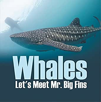Whales Lets Meet Mr Big Fins Whales Kids Book Childrens Fish Marine Life Books