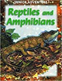 Reptiles and Amphibians, Sharon Dalgleish, 1590841964