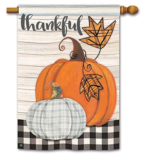 (Breeze Art Studio M Plaid Pumpkin House Flag - 28