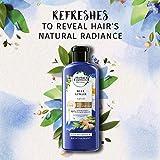Herbal Essences, Volume Shampoo & Conditioner Kit